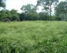 1.200 Hectáreas Agrícola-ganadero en las Lomitas Formosa