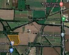 3.6 Hectareas en Alquiler Camino San Carlos
