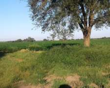 280 Hectareas Campo Agricola