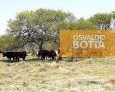 1000 Hectáreas en Esquina, Corrientes