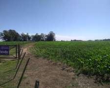 Vendo Campo en Saladillo