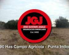 90 Has Ganaderas Punta Indio, Pcia Buenos Aires