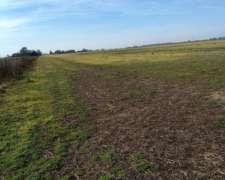 Venta de Campo Agricola en Theobald