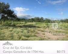 Excelente Campo de 1704 Has en Serrezuela, Cruz del Eje