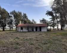 222 Has en Roque Perez, Ganadero C/mej a 15 km del Asfalto