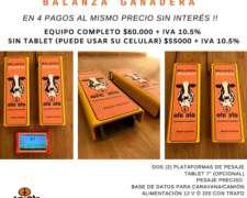 Balanza Ganadera EFE y EFE Directo de Fabrica con Colocación