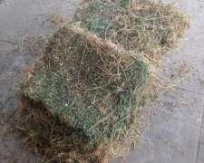 Fardos de Alfalfa de Excelente Calidad