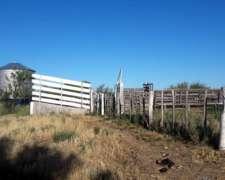 Vendo Campo en la Pampa