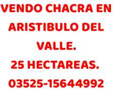 Chacra 25 Ha Aristobulo del Valle
