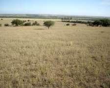 500 Has. Guatrache, la Pampa