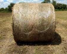 Vendo Rollos de Alfalfa y Pradera (dispongo de Transporte)