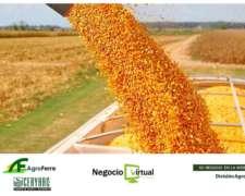 Corredor de Cereales y Oleaginosas - Entrega a Puerto