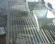Jaulas De Conejos Usadas
