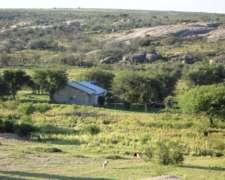 Venta Campo Casa y Galpón en San Luis