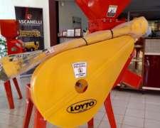 Moledora Loyto Km5tf (loyt 006)