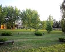 Campo en Lobos Cerdos Alquiler Sobre Ruta 41 WTS 1131981271