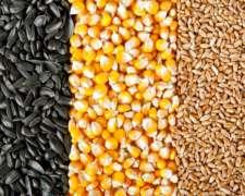 Compro Cereales En Bolsas De 40 O 50kg