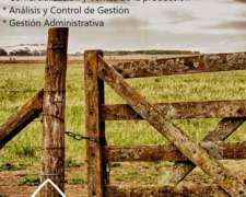 Asesoramiento de Empresas Agropecuarias