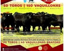 Vaquillonas Negras Y Coloradas Viernes 31, Marcos Juarez