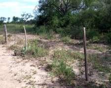 Santiago del Estero Pinto: Campo en Venta de 67 Has de Monte