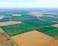 835 Has Campo 85% Agrícola Sobre Ruta en Entre Rios