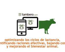 Tambero Gratis - Tambero.com