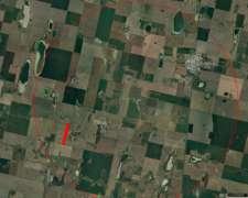 Liquido Campo Santa Eufemia 14 Has USO Agrícola