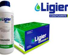 Coadyuvante Ligier Full X Litro