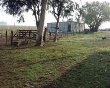 Dueño Vende Campo con Mejoras