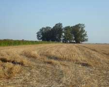 Venta de 860 Has Campo Agricola