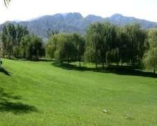 Campo en Mendoza 1300 Has