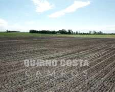 Muy Lindo Campo en Duggan SA Areco. 170 Has EXC Ubicacación