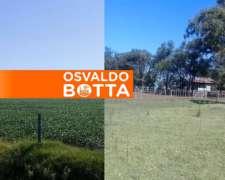 550 Hectáreas en Cañada Seca, Buenos Aires