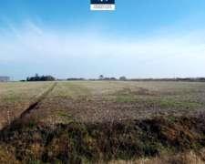 Hectáreas Agrícolas - Sobre Ruta 191