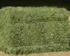 Fardos De Alfalfa 1° En San Rafael