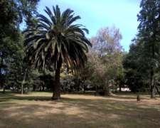 65 Has. Campo Mixto en Carmen de Areco