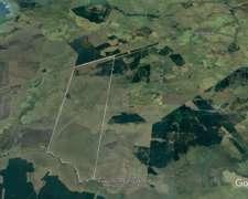 Campo Sobre Ruta 12 en Corrientes, a 15 Minutos de Posadas