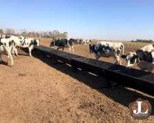 Comederos para Hacienda Tipo Batea