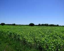 Campo Agrícola/ganadero 820 Hectareas Sobre Ruta