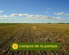 La Pampa - Venta Campo 1.600 Ha - Recría-engorde-agricultura