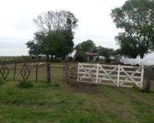 Vendo Campo en Nogoya a 22 km de la Ciudad Macia y 75 km de