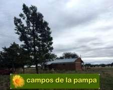Venta Campo 850 Ha Dpto. Loventue - la Pampa