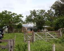 Campo de Cria 105 Has en Zona Horticola