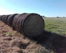 Rollos Mixtos de Alfalfa
