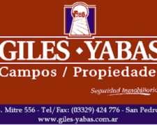 121 Hectareas en San Pedro - Giles y Yabas