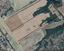 Vendo Campo Desmontado Apto para Agricultura.