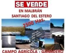 Vendo 2500 Has Mixtas Malbrán Santiago Estero