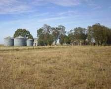 Campo de 380 Has en Coronel Pringles. 100 Agrícola