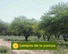 La Pampa - Venta Campo Ganadero 3.600 Ha Caldenal