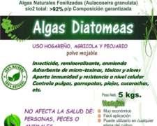 Tierra de Diatomeas 100% Puras, Micronizadas, Importad X 5kg